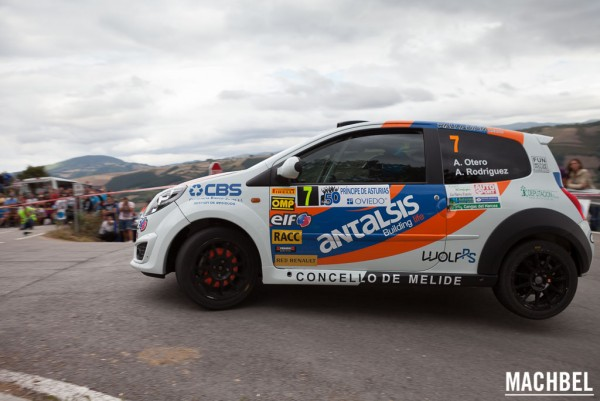 Rally Príncipe de Asturias 2013